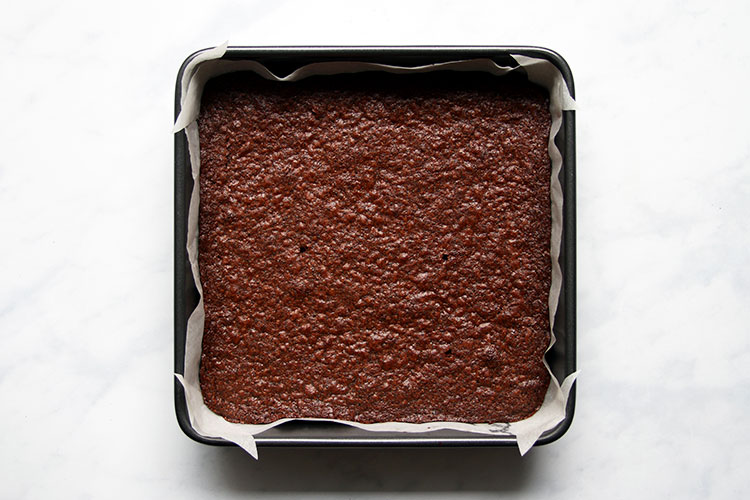 Baked poppy seed brownies in pan