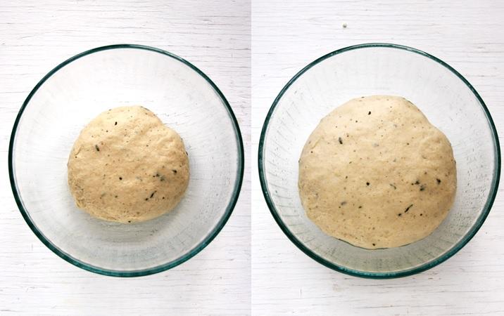 Dough for Thanksgiving dinner rolls
