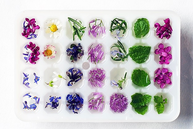 How to make ice cubes with flowers