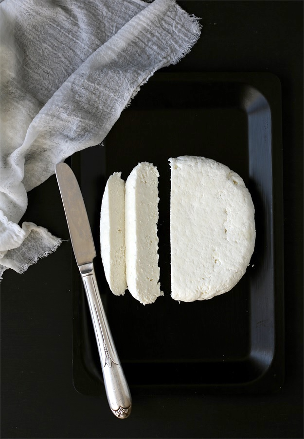Paneer Indian Fresh Cheese