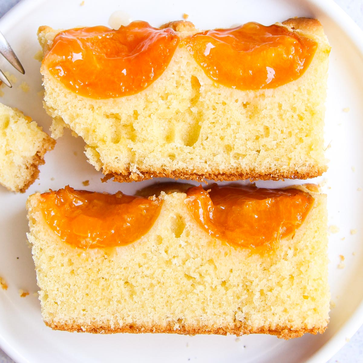 Austrian Apricot Sheet Cake - Light and Airy