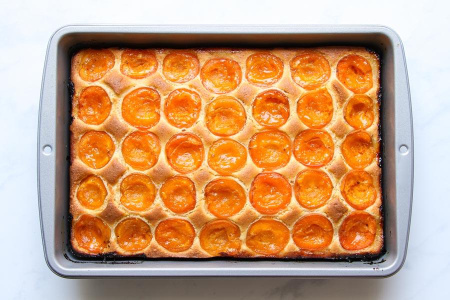 Viennese apricot sheet cake recipe